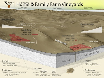 Vineyard Map