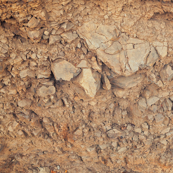 Mt. Pajaro Vineyard Soil