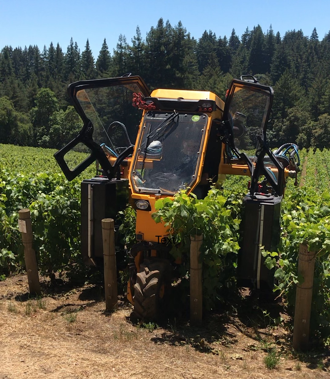 Over the row tractor at Mt. Pajaro